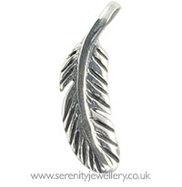 Surgical steel feather charm