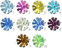 Ti2 titanium small ten petal flower studs