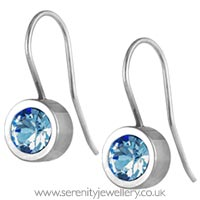Blomdahl titanium grand bezel drop earrings