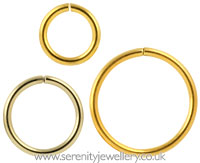 Gold PVD steel continuous ring