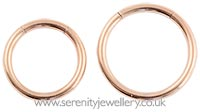 Rose gold PVD steel smooth segment ring